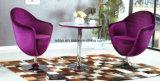 Tabella del caffè della mobilia e presidenza commerciali (LL-WST014)