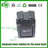 中国在庫が付いている中国の電気手段のリチウム電池のパックのための最も売れ行きの良いEV電池36V/10ah LiFePO4電池のパック