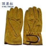 De gouden Goedkope Korte Hittebestendige Anti Scherpe Handschoenen van de Veiligheid van het Leer