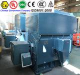 Motor eléctrico de la CA y de la C.C. de Shangai para el molino de acero