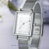 Tira de couro OEM Senhoras Quartz Relógios sabia, Senhora Assista (WY-17034B)