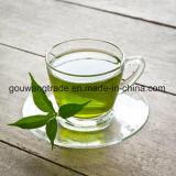 Starker Effekt-natürliches Kräutergrün, das grünen Tee abnimmt