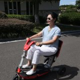 方法旅行移動性の電気スクーター