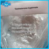 Testosterona esteroide sin procesar Bodybuilding Cypionate de la CYP de la prueba del polvo