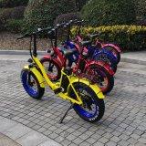 소녀를 위한 20inch 뚱뚱한 타이어 전기 접히는 E 자전거