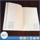 Het houten Vrije Notitieboekje van het Document van de Steen Plup