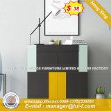 Apresentação vertical Grafitti PVC WhireChina Gabinete (HX-8ª9433)