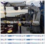 Изготовление крана Китая гидровлическое морское