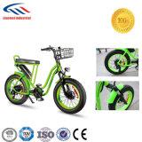 숙녀 야외 활동 전기 자전거를 위한 디자인