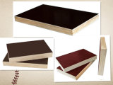 Brown/Black/Red/Contruction/Building Material/First Grade Film Faced Poplar Plywood