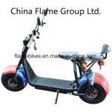 1500W 60V/30ahの電気ゴルフスクーター