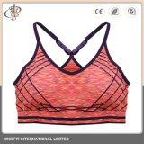 Dame-reizvoller Tennis-Yoga-Sport-Büstenhalter