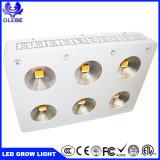 900W Espectro COB crecer proyector LED