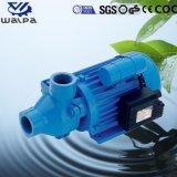 이탈리아 질을%s 가진 깨끗한 물을%s Pm 시리즈 말초 펌프