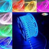 Indicatore luminoso impermeabile ad alta tensione della corda dell'indicatore luminoso di striscia di SMD 5050 RGB LED LED