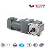 Micro piccolo motore elettrico e scatola ingranaggi di 90W 110/220/380V