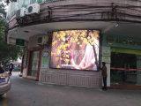 Pantalla LED de pared Screenled Signstage Pantalla Pantalla LED