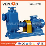 Yonjou Motor-Wasser-Pumpe (ZW)