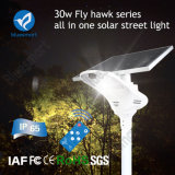 Solarstraßenlaternealles Cer IP65 FCC-15-80W in einer Garten-Lampe