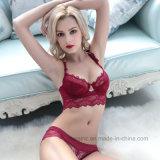 Sexy Panty вверх дамы кружевом и бра в низкой цене