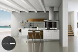 Modernes Glossy Lacquer Kitchen Cabinet (zz-034)