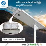 조정가능한 가벼운 헤드를 가진 통합/한세트 태양 옥외 LED 가로등