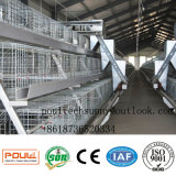 가금 농기구 어린 암탉 병아리 자동적인 어린 암탉 Aframe는 중국에 있는 가금 감금소 제조자/공급자를 감금한다