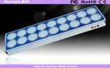 800W 고성능 LED 꽃 플랜트는 빛을 증가한다