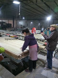La madera contrachapada chapeada de madera técnica/dirigió la madera contrachapada chapeada madera