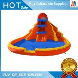 De Opblaasbare Dia van het Stuk speelgoed van de Tuin van de Partij van de familie met Zwembad