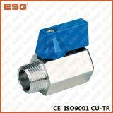 Válvula de esfera inoxidável do aço M/M de extremidade de linha mini