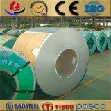 254smo 6 de Rol van het Roestvrij staal Moly voor De Gaszuiveraars van de Ontzwaveling van het Rookgas
