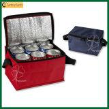 Sacs de refroidissement isolés extérieurs en polyester 6 caisses (TP-CB268)