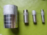 Raccordo tubo flessibile in acciaio inox DIN2999 dal tubo