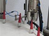 Dtnx-60y 매니큐어 채우는 폐쇄 및 캡핑 기계