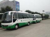Buon Performance Euro 2 30 Seats Bus con Competitive Price