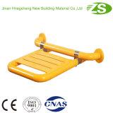 SGS Tested Handicap Bath Chair pour salle de douche