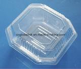 Beste Qualitätswegwerfbare Fruchtsalat-verpackenbehälter-Kasten-Tellersegmente 3 Zellen