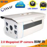 2.0 Megapixelデジタル網IP CCTVのカメラの製造者