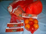 カスタムロゴのPPのPEのプラスチックタイプ卸売の野菜Exturedのフルーツの網の純袋