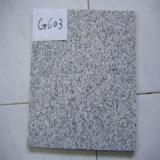 Coupure blanche de granit de l'escompte G603 pour classer 600*600*20 Bush martelé terminé