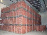 Vegetal de estructura de acero de almacenamiento de alimentos habitación fría