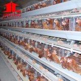 Sistema automático galvanizado acero de la jaula del pollo de la capa de 4 gradas