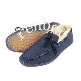Nuevo diseño que llegan de los hombres zapatos casuales de lona