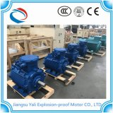 Motore elettrico di prezzi di fabbrica Ye3
