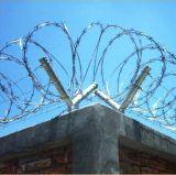 Bto-22 Quente Quente Galvanizado Military Concertina Razor Wire