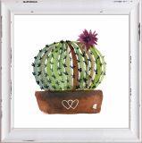 Het Decoratieve Canvas die van de Cactus van de installatie Met de hand gemaakt Olieverfschilderij afdrukken