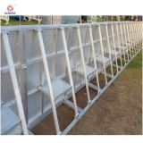 Металлические ограждения безопасности очереди после барьеров для доступа к