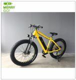 250W強力なブラシレスモーター脂肪質の電気バイク