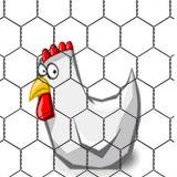 """1/2 """", 1 """", 3/4 do """" de engranzamento de fio sextavado revestido da galinha da rede de fio PVC"""